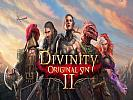 Divinity: Original Sin II - wallpaper #1